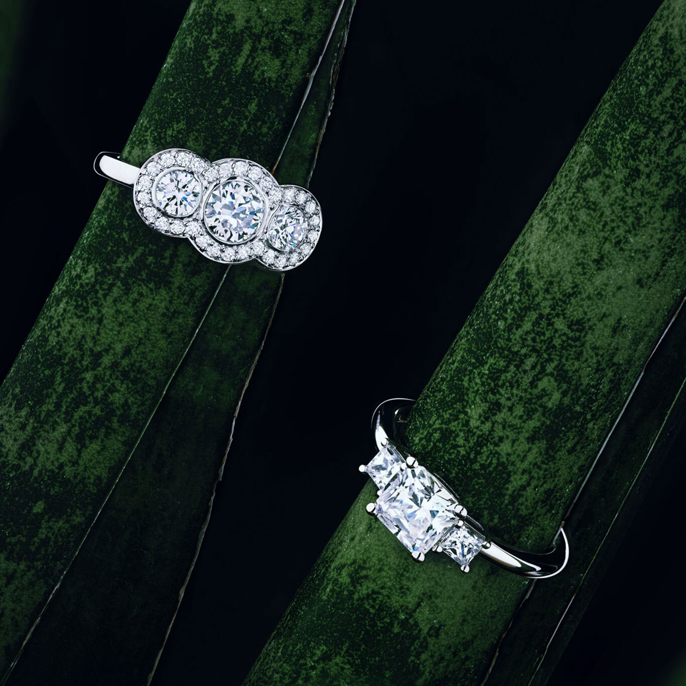 Two Ecksand Pavé Diamond Triology Engagement Rings