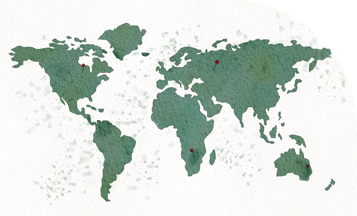 Hand-painted Map of the World with Push Pins in Canada and Botswana